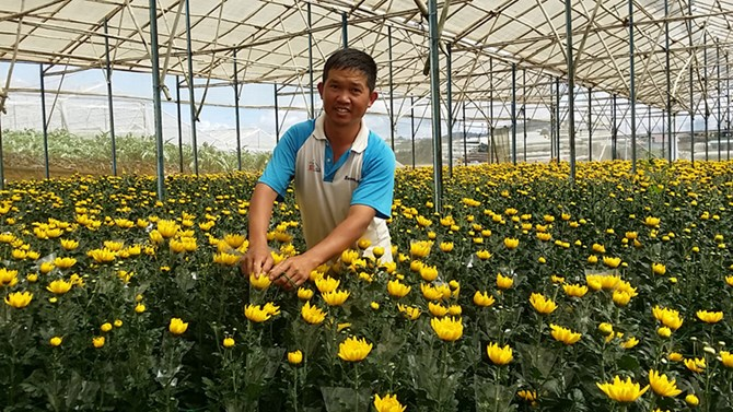 Từ vật lộn mưu sinh tới thu nhập hàng tỷ đồng/năm nhờ trồng hoa