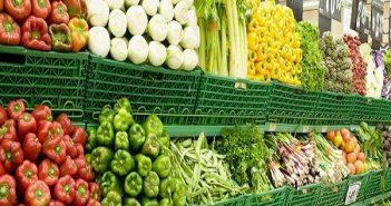 10 lời khuyên cho người khởi nghiệp với mặt hàng rau sạch