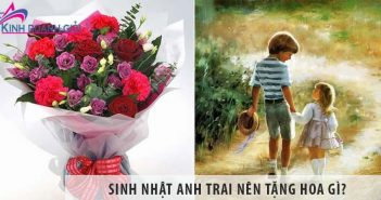 Sinh nhật anh trai nên tặng hoa gì?